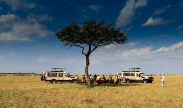Tanzania Ultimate Safari with Denell Falk | Calgary Adventure Travel & Luxury Tours