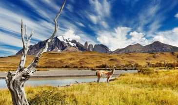 Chile - Winelands, Desert & Mountains | Calgary Adventure Travel & Luxury Tours