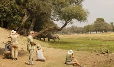 Zimbabwe – More Inspiration | Calgary Adventure Travel & Luxury Tours