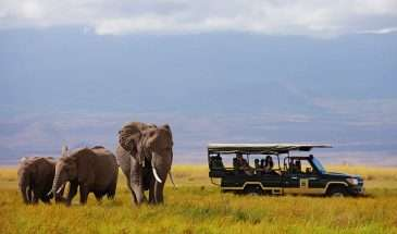 Charismatic Kenya | Calgary Adventure Travel & Luxury Tours