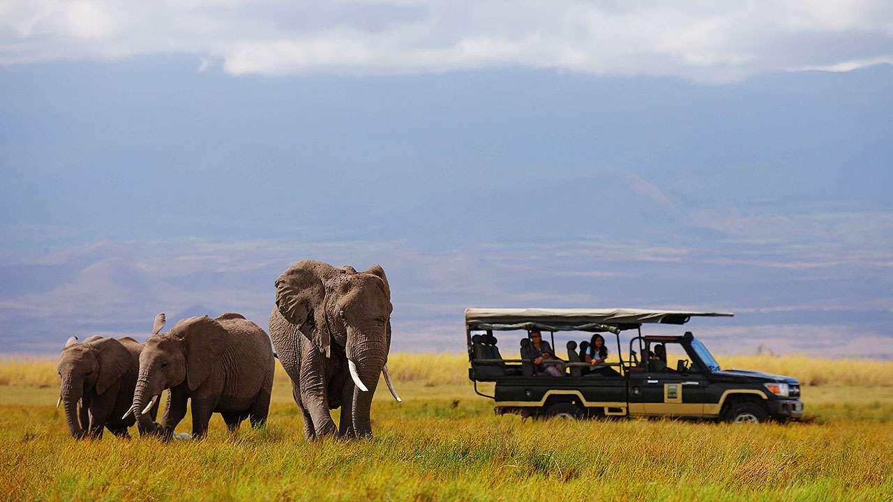 Charismatic Kenya | Calgary Adventure Travel & Luxury Tours