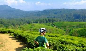 Bike, Hike, Train & Safari Sri Lanka's Natural Wonders | Calgary Adventure Travel & Luxury Tours