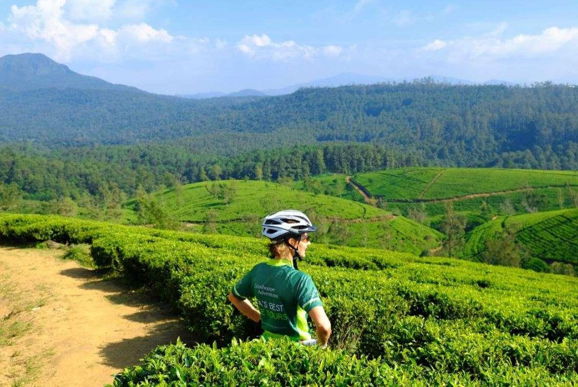 Bike, Hike, Train & Safari Sri Lanka's Natural Wonders | Calgary Adventure Travel & Luxury Tours