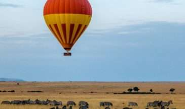 Mara Migration Kenya - Family Safari | Calgary Adventure Travel & Luxury Tours