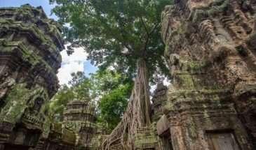 Mekong Bike & Boat Adventure | Calgary Adventure Travel & Luxury Tours