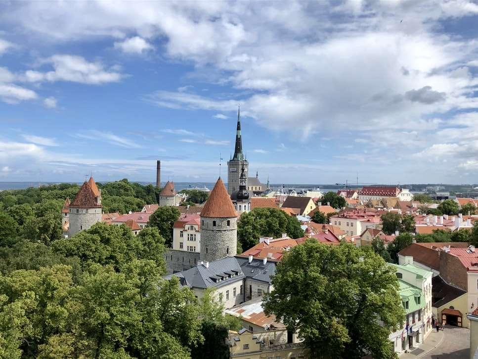 Custom Estonia | Calgary Adventure Travel & Luxury Tours