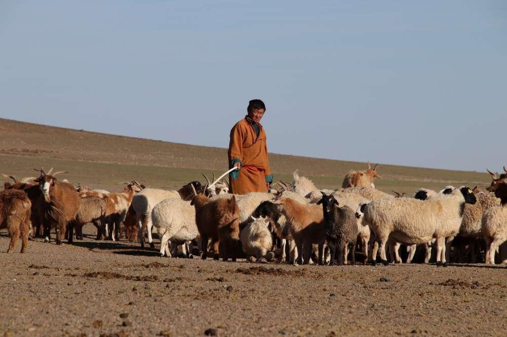 Mongolia Highlights | Calgary Adventure Travel & Luxury Tours