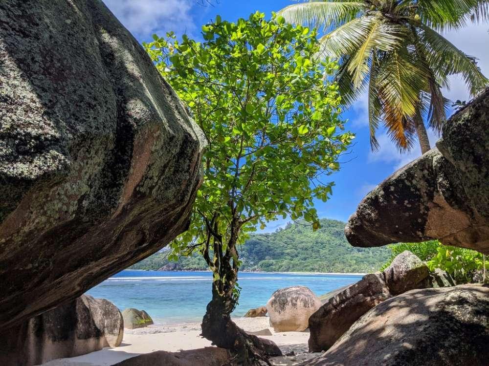 Seychelles – More Inspiration | Calgary Adventure Travel & Luxury Tours
