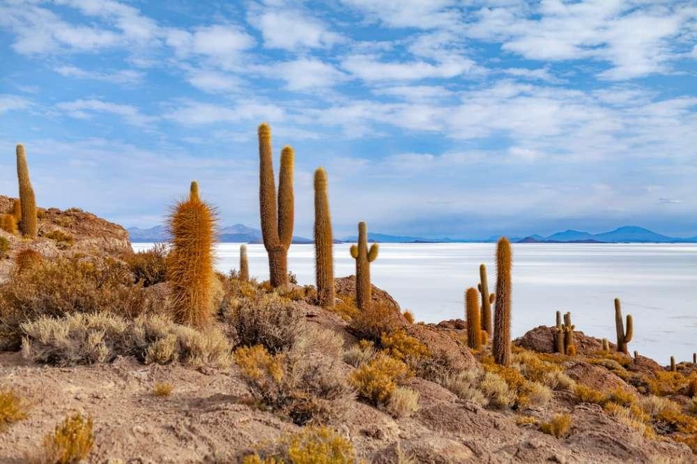 Bolivia - More Inspiration   Calgary Adventure Travel & Luxury Tours