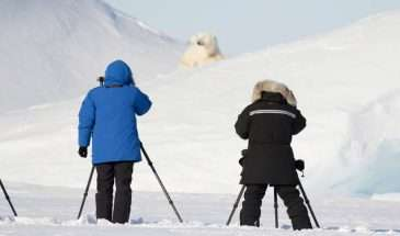 Exclusive Arctic - Narwhals & Polar Bears | Calgary Adventure Travel & Luxury Tours