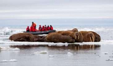 Russian Far East & Alaska Expedition | Calgary Adventure Travel & Luxury Tours