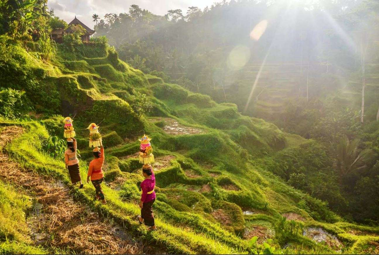 Papua New Guinea, Indonesia & Singapore Cruise | Calgary Adventure Travel & Luxury Tours