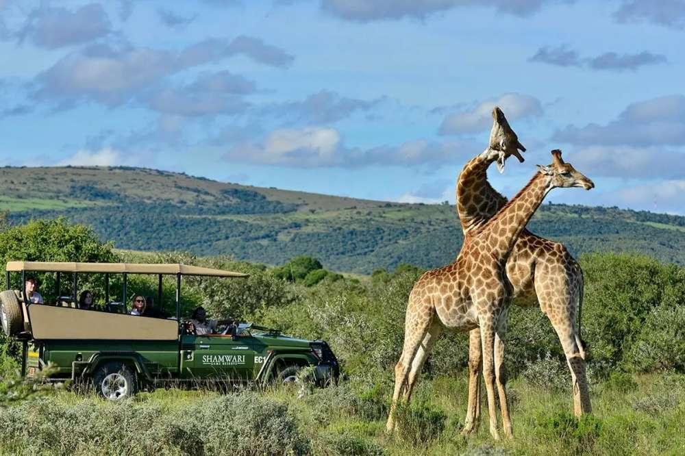 Rwanda & South Africa | Calgary Adventure Travel & Luxury Tours